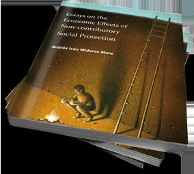 cover proefschrift Andres Mideros gedrukt door Boekenplan